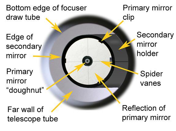 Eyepiece view